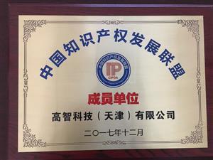 高智网受邀成为中国知识产权发展联盟会员单位