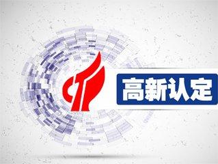 天津市高新技术企业认定申报材料参考格式(2017年版)
