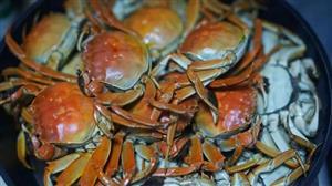 大闸蟹注册商标已达125个 商标注册需要哪些流程?