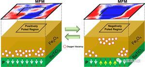中科院科学家在多铁异质结电控磁领域研究取得新进展