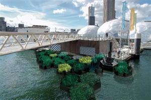 老外花了5年时间捡垃圾,造了座漂浮公园,或将拯救地球!
