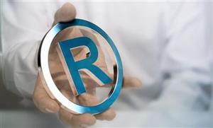 产品系列名称中使用他人注册商标的行为定性研究