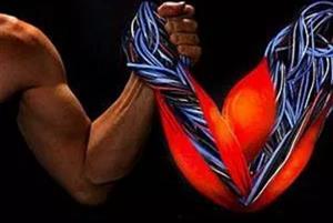 中美等国研究人员开发出新型人工肌肉 收缩力达人体肌肉40倍
