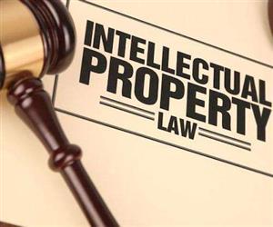 对最高法院知识产权案件年度报告(2019)第65号法律适用问题的困惑