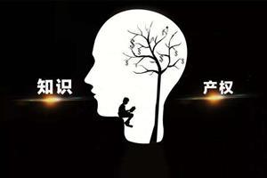 全国人大代表刘峰:建立统一知识产权交易市场
