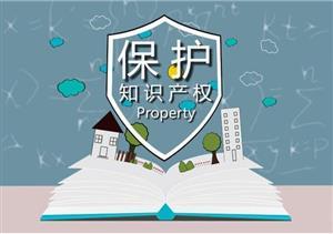 知识产权保护司司长张志成:33家保护中心对中外企业同等保护