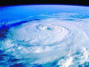 """海洋热浪会造成生态系统""""重新分布"""""""