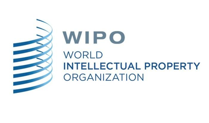 【WIPO最新数据】:中国实用新型申请量占世界96.9%!