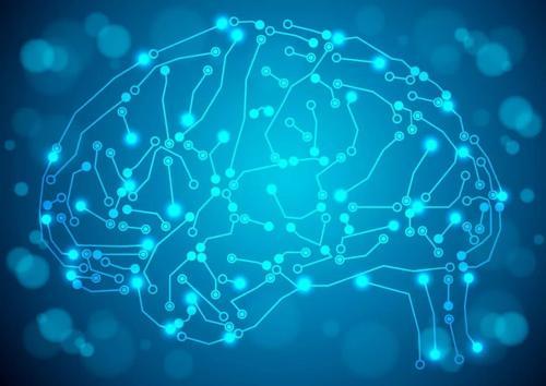 陆军军医大学首次发现大脑另一套GPS系统