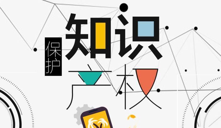 全国知识产权保护监测信息网络之构建与运行研究