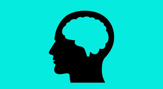 """""""迷你大脑""""可体外生长,发育如婴儿大脑一样成熟!"""
