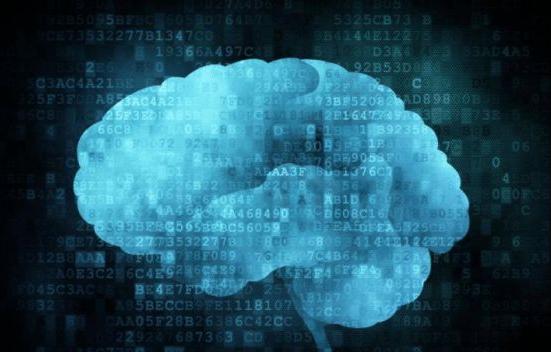 """中外学者合作对猕猴大脑实现""""微米级""""解析"""